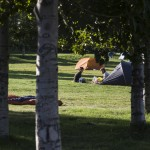 Reykjavik Campsite is eco friendly